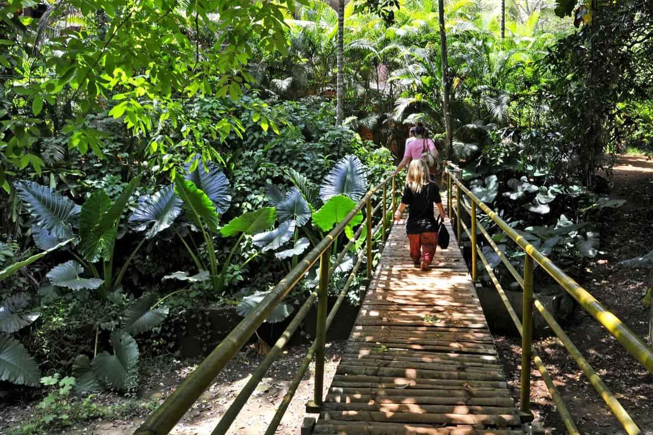 spice plantation tour